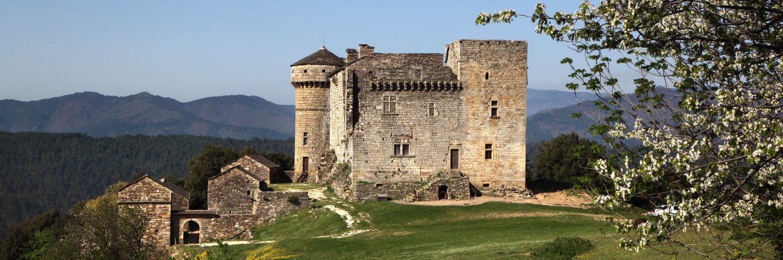 Tips voor een leuke vakantie in Aujac (Languedoc)